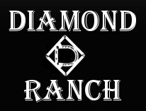 Daimon D ranch